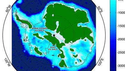 A Melting Antarctica Could Bring an Underwater Smithsonian