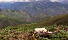 How Ancient Monsoons and Tectonic Shifts Shaped This Flowering Mountain Hotspot
