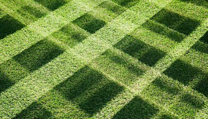 Why Astronomers Are Fighting Back Against Robotic Lawnmowers