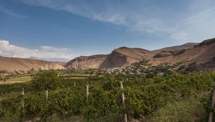 Armenian Wine Country