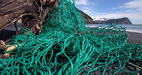 Fishing net at Alaska's Gore Point