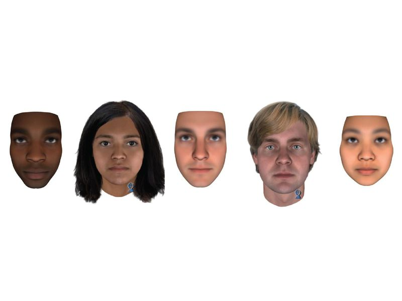 How Accurately Can Scientists Reconstruct A Person's Face