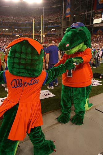 20110520110721Florida-Gators-mascot-dancing.jpg