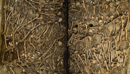Researchers Catalogue the Grisly Deaths of Soldiers in the Thirty Years' War