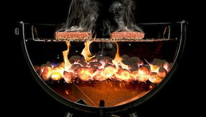 These Spectacular Cutaways Give You An Insider's View of Your Food