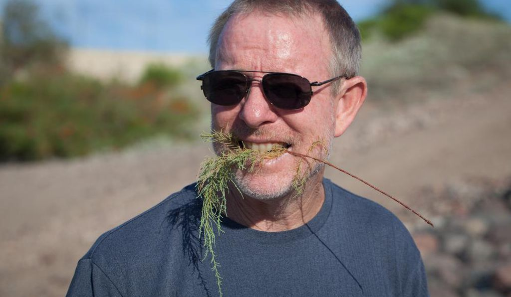 Matthew Chew, an assistant research professor at Arizona State University, holds a salt cedar sprig in his mouth. The leaves do taste salty, hence the plant's name.