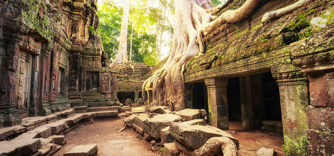 The iconic site of Ta Prohm, Angkor Wat