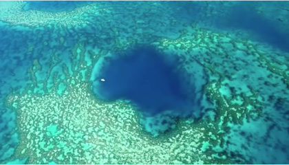Diver Explores Beautiful Blue Hole Hidden in Plain Sight