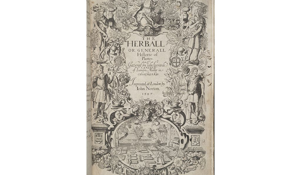 The so-called newly discovered portrait of Shakespeare was found in the 1597 volume,<em>The herball, or, Generall historie of plants</em> gathered by John Gerarde, 1597, which is held in the collections of the Smithsonian Institution.