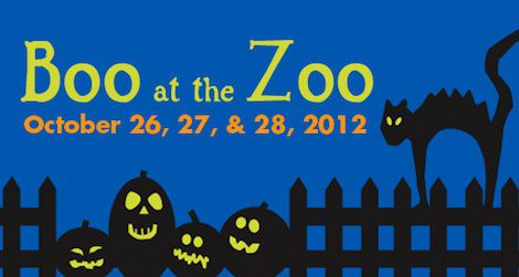 Spooky fun for everyone at the Zoo