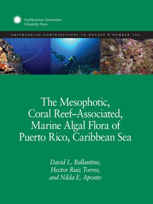 The Mesophotic, Coral Reef-Associated, Marine Algal Flora of Puerto Rico, Caribbean Sea photo