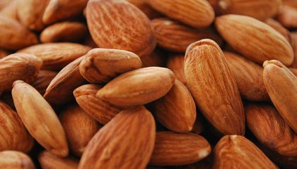 Thieves Are Making Off With Millions of Dollars in Stolen Nuts