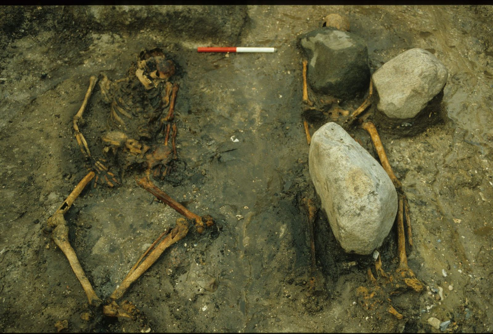 DNA Analysis Suggests Mother and Son Were Buried in Famous Viking Grave
