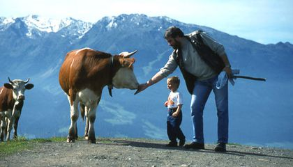 Rick-Steves-Gimmelwald-Cow-Culture-631.jpg