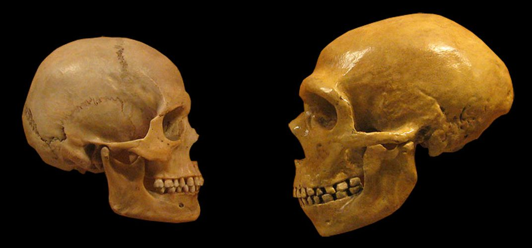Caption: Ancient Teeth With Neanderthal Features Discovered