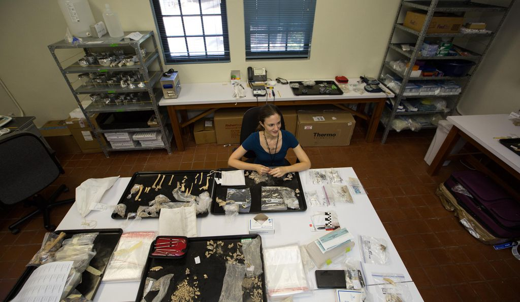 """""""In societies like the Maya, where we have very few written records,"""" says the Smithsonian's Ashley Sharpe (above), """"any clues concerning events in history are incredibly valuable."""""""