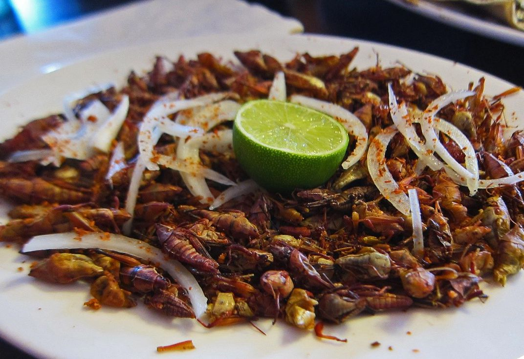Plate of prepared grasshoppers with white onion and a lime wedge
