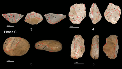 Tiny Stone Tools Show Humans Hunted in the Rainforest 45,000 Years Ago