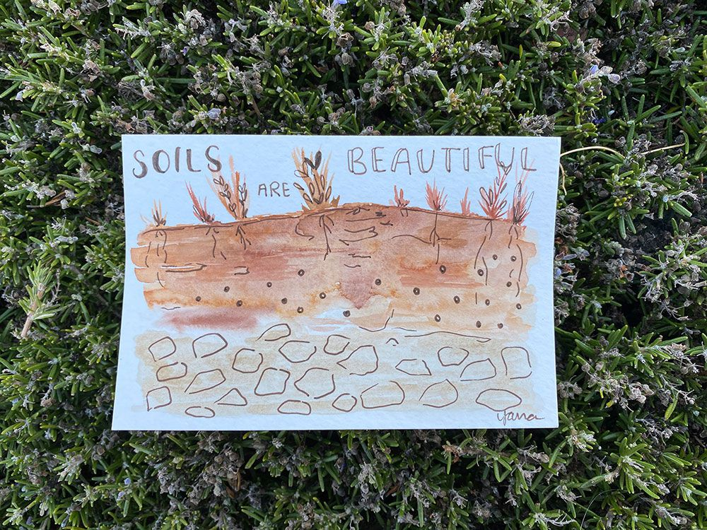 Soils Are Beautiful