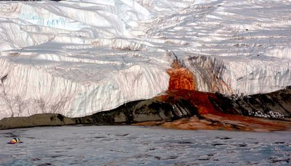 Antarctica's Blood Falls Helps Unravel the Inner Workings of Glaciers