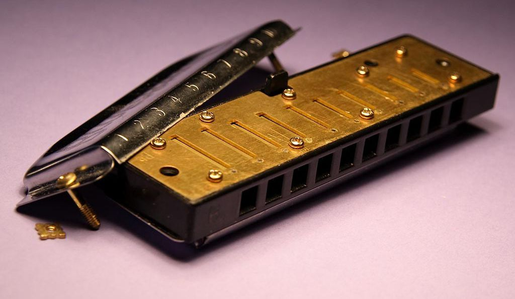 The reed plate of a harmonica, featuring 10 free reeds.