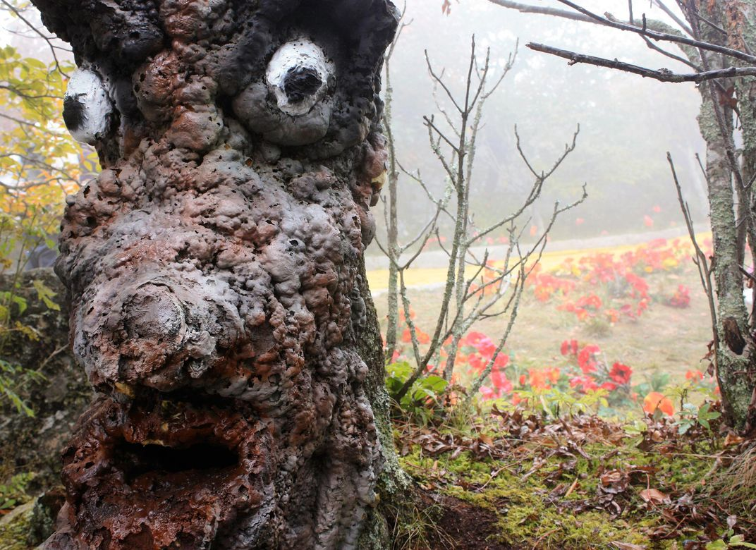 Tree with face and poppies