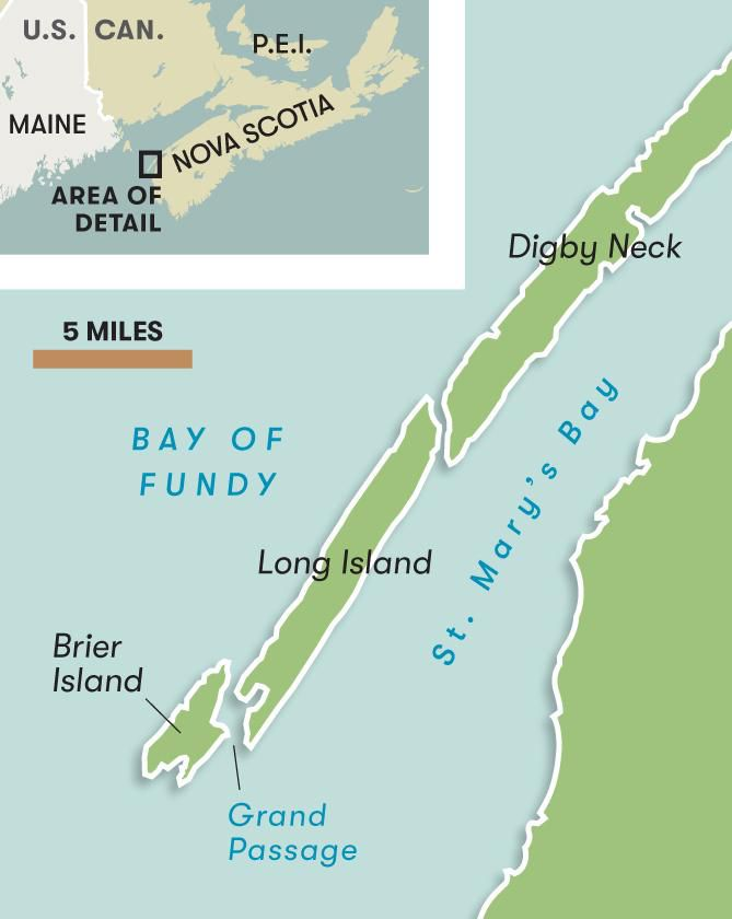 Map of Bay Fundy