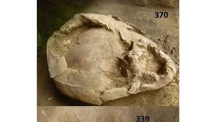 Archaeologists Unearth Remains of Infants Wearing 'Helmets' Made From the Skulls of Other Children