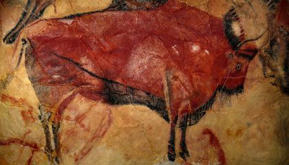 Bison Cave Painting From Altamira