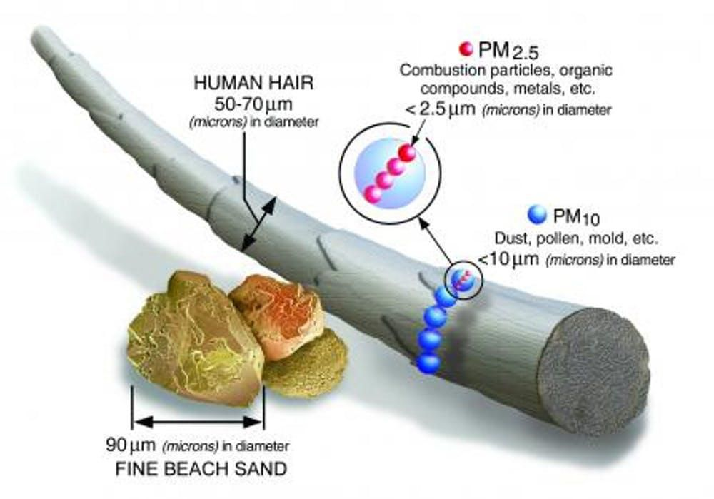Fine particulates are much smaller than a human hair.