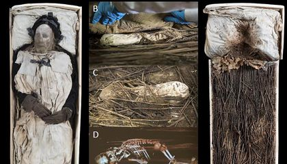 Why Was This Mummified 17th-Century Bishop Buried With a Fetus?