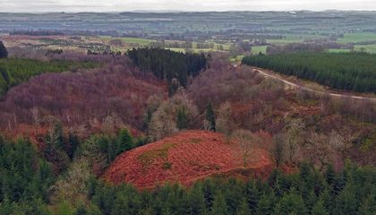 Aerial Surveys Reveal Possible Fort of Scottish Patriot William Wallace