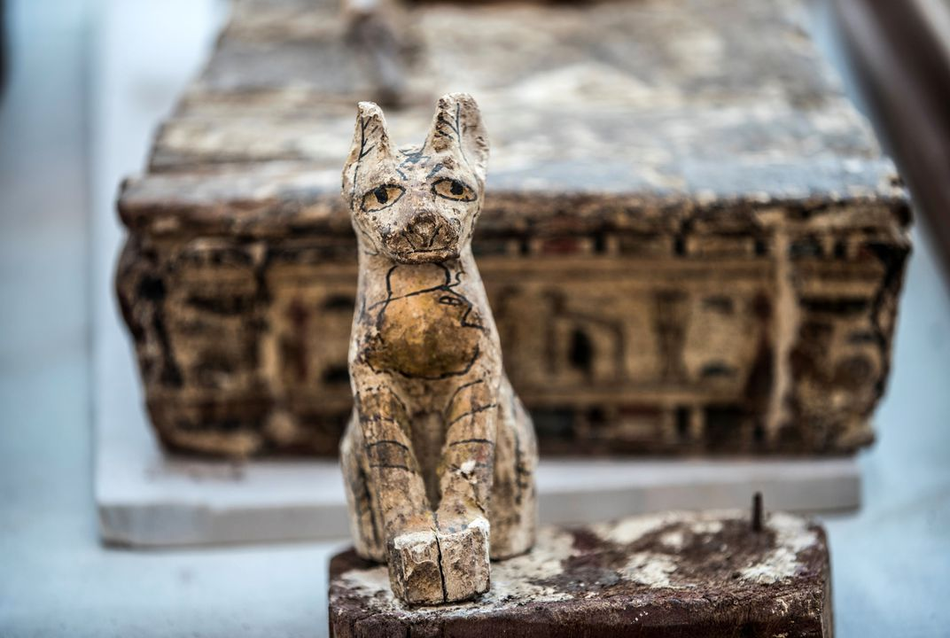 Archaeologists Reveal Rare Mummified Lion Cubs Unearthed in Egypt