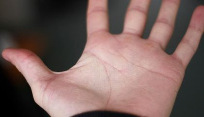 In Some Ways, Human Hands Are More Primitive Than Chimp Hands