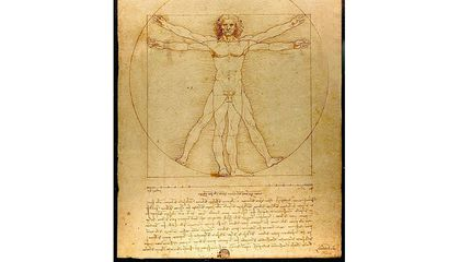 Leonardo's 'Vitruvian Man' Is Headed to the Louvre Despite Italian Scholars' Protests