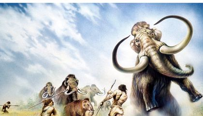 Neanderthals Hunted in Groups, One More Strike Against the Dumb Brute Myth