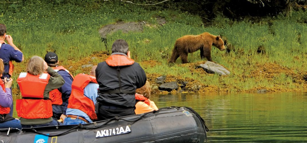 Travelers watching a brown bear, Tongass National Forest. Credit: Ralph Lee Hopkins