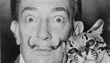 Dive Through More Than 1,000 Dalí Paintings Online