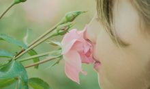 smelling roses