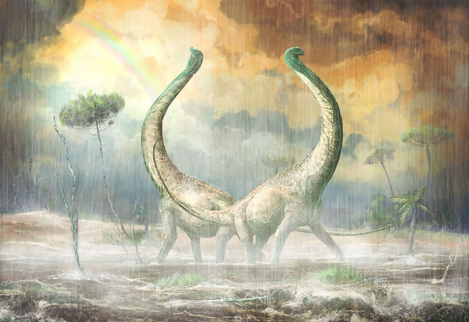Meet The Dinosaur With The Heart Shaped Tail Bone Smart News Smithsonian Magazine