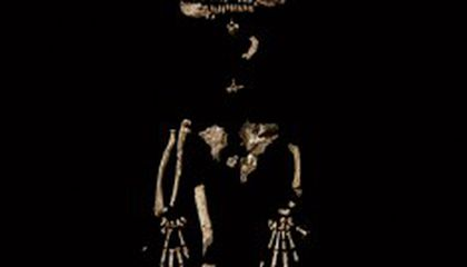 Fabulous New Fossil of a Human Ancestor