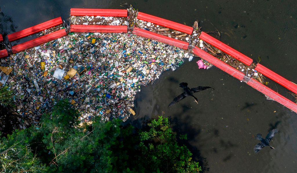 Microplastics infiltrate the food chain as animals inadvertently consume plastics. Tiny deep ocean filter feeders have been found with microplastics in their bodies, as have fish, birds, humans and other animals.