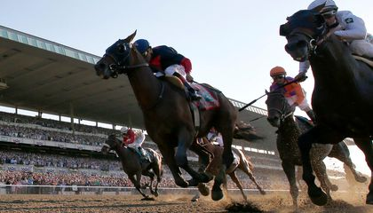 Curling, Baking, Typos: How This Year's Kentucky Derby Contenders Got Their Names