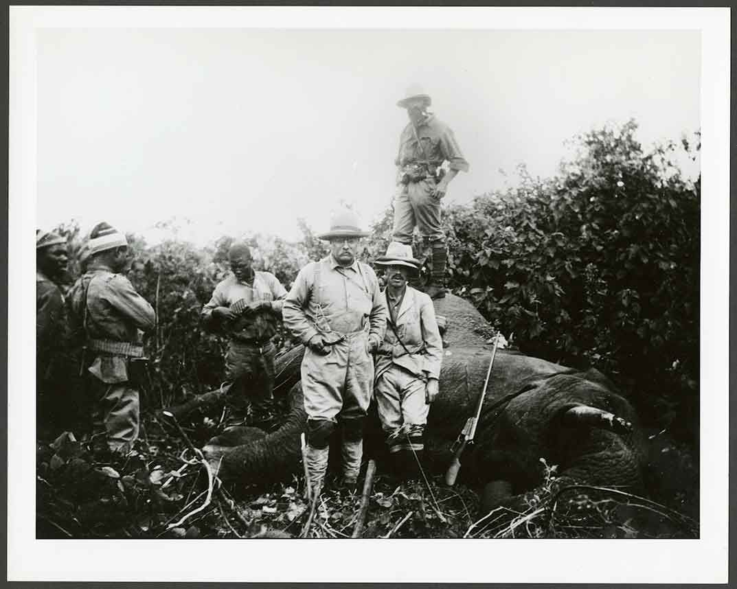 Teddy Roosevelt's Epic (But Strangely Altruistic) Hunt for a White ...