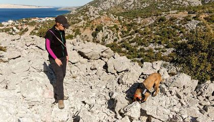 Canine Archaeologists Sniff Out 3,000-Year-Old Graves in Croatia