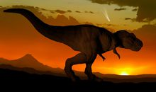 New Origin Theory of the Dino-Killing Asteroid