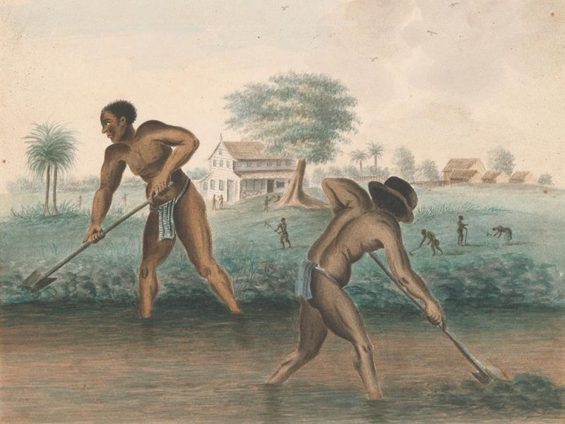 Two dark-skinned men work in a field, heads bent and backs arched, in front of a field, a large white house in the distance and a blue sky with clouds