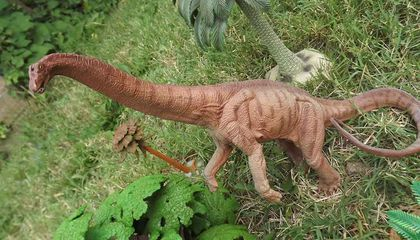 This Man Claims He Has the World's Largest Collection of Toy Dinosaurs, and He Loves Them All