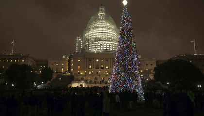 The Capitol's Christmas Tree Is (Partially) Made of Trash