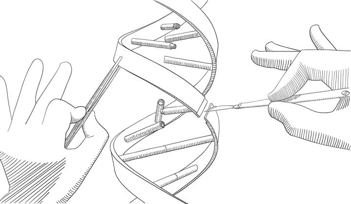 Scientists Invent a New Gene Editing Tool